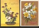 5k. FLORA - Flower - Set Of 2 - USSR - 1980 - 1981 - Asters - Narcissus - Non Classés