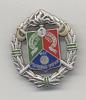 P9 LEGION ETRANGERE 1° REGIMENT ETRANGER CAVALERIE NOEL 2007 EN ARGENT ORIGINAL SILVER MADE FRENCH FOREIGN LEGION BADGE - Army