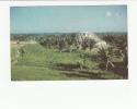 BELIZE - [OF #11103] - MAYA INDIAN RUINS AT ALTON HONDURAS BELIZE - Belize