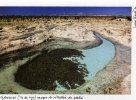 TAAF îles éparses GLORIEUSES Vasque De Rétention Du Platier (carte Provenant Du Carnet Lucia Simion) - Unused Stamps