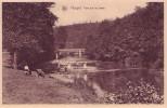 HOUYET = Pont Sur La Lesse (Nels) Vierge - Houyet