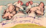 """COCHONS """"mariage De Raison"""" - Schweine"""