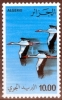 Algeria 1979  Storks MNH** - Lot. 1098 - Algeria (1962-...)
