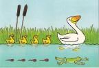 CPM Carte Animaux Humour 14,7x10,5 Cm Marc Chalvin + Enveloppe - Canard Caneton Duck Frog - Humour