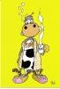 CPM Carte Postale Vache - Jacques Bossé Dit Yack 14,8 X 10,5 Cm - Dimanche Matin / Sunday Morning - Vaches