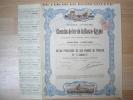 Action - Chemins De Fer De La Basse Egypte Le Caire 1896 - Action De 500 Francs Au Porteur - Chemin De Fer & Tramway