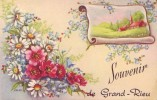GRAND RIEU = Souvenir De.... - Carte Couleur (vierge) - België