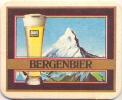D63-067 Viltje Bergenbier - Sous-bocks