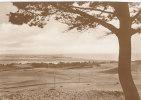 Hiddensee, Ausblick, Um 1930 - Hiddensee