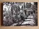 Im1156)  Ventimiglia - La Mortola - Giardini Hansbury - Imperia