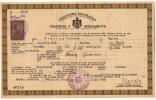 H CERTIFICATE OF CITIZENSHIP KINGDOM OF JUGOSLAVIA ZAGREB CROATIA - Historical Documents