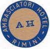 ITALY RIMINI AMBASCIATORI HOTEL VINTAGE LUGGAGE LABEL