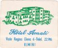 ITALY RIMINI HOTEL AMATI VINTAGE LUGGAGE LABEL