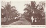 Suva Fiji, Hercules Street Scene, Natives, On C1910s Vintage Postcard - Figi