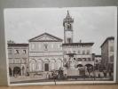 Empoli - Piazza  Farinata Degli Umberti - Animata - Sin Clasificación