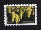 Timbre Oblitéré Used Stamp Carnet Des Fruits Pour Une Lettre Verte Raisins Blancs France FRANCE 2012 - France