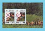 BLOC COREE DU NORD KOREA NORTH ENVIRONNEMENT OBLITERATION 1ER JOUR 1994 / AT 06 - Corée Du Nord