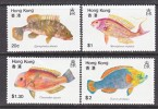 Hong Kong 369-72  **  FAUNA  FISH  ** - Hong Kong (...-1997)