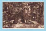 CALLENELLE - Pensionnat Des Dames De St MAUR - La Grotte De Lourdes - Peruwelz