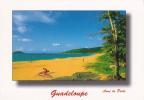 Guadeloupe- Anse La Perle - - Guadeloupe