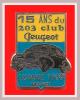SUPER PIN´S PEUGEOT : Rare Pin's Des 15 Ans Du Club Des 203 PEUGEOT, LOMME 1999 - Peugeot