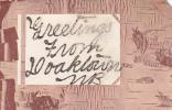 Greetings From Doaktown, New Brunswick, Canada, 1900-1910s (Glitter Detail) - Nouveau-Brunswick