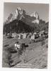 ZAPPE' DI CADORE - Monte Pelmo - Cartolina FG BN NV - Italie