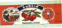 L-ETICHETTA -CURCIO-LA CIOCIARETTA MARMELLATA DI CILIGIE-NAPOLI - Fruits & Vegetables