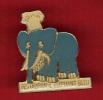 23855-pin's Restaurant L'elephant Bleu - Alimentazione