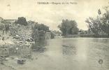 PORTUGAL - TOMAR - MARGENS DO NABAO - 1905 PC - Santarem