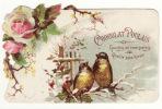 CHROMO Découpis Chocolat Poulain Hiver Neige Oiseaux Fleurs - Poulain