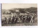 BANYULS - Rentrée De La Peche à La Traine - Banyuls Sur Mer