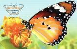 Cocos Islands 2012 Butterflies Presentation Pack - See 2nd Scan - Cocos (Keeling) Islands