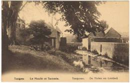 04316g MOULIN - TANNERIE - De Molen - Tongres - Tongeren
