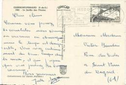 Puy De Dôme : CLERMONT  FERRAND : Le  Jardin Des  Plantes - Clermont Ferrand