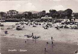 SENIGALLIA  /  Spiaggia _ Viaggiata - Ancona
