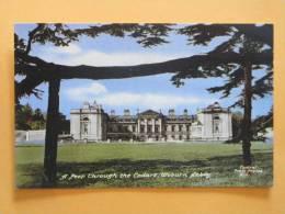 ANGLETERRE - Woburn Abbey (Bedfordshire) - A Peep Through The Cedars, Petit - Non Classés