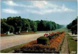 Compiègne - Allée Des Beaumonts - Compiegne