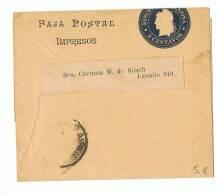 L-ARG4 - Entier Postal Bande Pour Journaux 2 Centavos