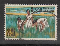 Ceylon  Scott No 379a Used   Year 1964 - Sri Lanka (Ceylon) (1948-...)