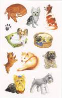 [Y] Vignettes Autocollantes Chiens Self-adhesive Labels Dogs - Unclassified
