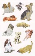 [Y] Vignettes Autocollantes Chiens Self-adhesive Labels Dogs - Stickers