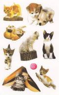 [Y] Vignettes Autocollantes Chats Self-adhesive Labels Cats - Unclassified