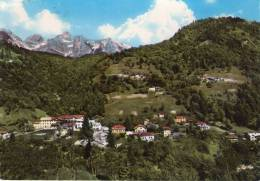 Cartolina Da California Dolomiti Cartolina Viaggiata Nel 1962 - Belluno
