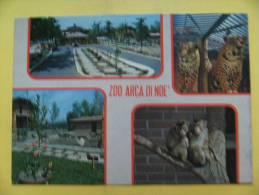 Montalenghe (TO) - Zoo Arca Di Noè - Non Viaggiata - Andere Städte