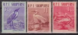 ALBANIE  OISEAUX  Yvert N°552/4   Réf 1525 - Oiseaux