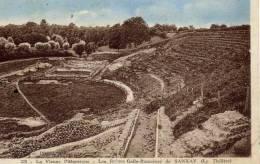 86- SANXAY- Les Ruines Gallo-romaines-Le Théatre- - Unclassified