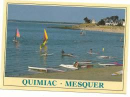 Loire Atlantique : QUIMIAC  -  MESQUER : Vue  1993 - Zonder Classificatie