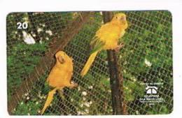 BRASILE ( BRAZIL) - TELEPARA   -  1999  BIRDS: ARATINGA GUAROBA (ARARAJUBA)   - USED  -  RIF. 2342 - Pappagalli