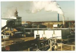 LA SUCRERIE DE TOURY-  L' Usine, La Réception, La Déshydratation Et Ses Panaches De Vapeur D'eau. - Industrie